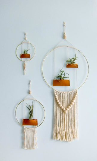 Passage One Airplant Wall Hanging
