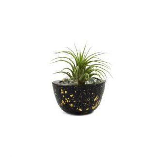 Momma Pots Mini Speckle Pot