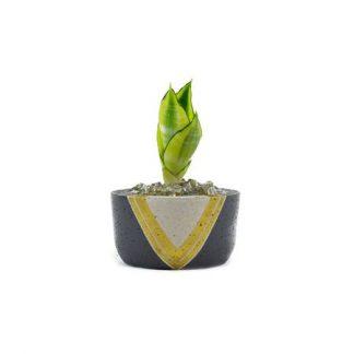 Momma Pots Trixie Granite Pot