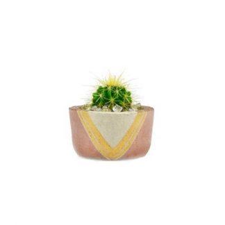 Momma Pots Trixie Rose Pot
