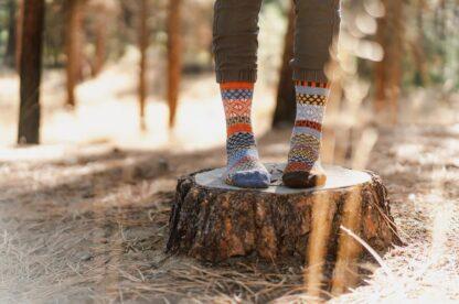 Ponderosa Recycled Wool Crew Socks from Solmate Socks