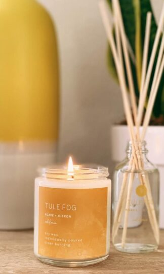 Agave + Citron Soy Candle Tule Fog