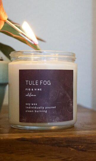 Fig + Vine Soy Candle Tule Fog
